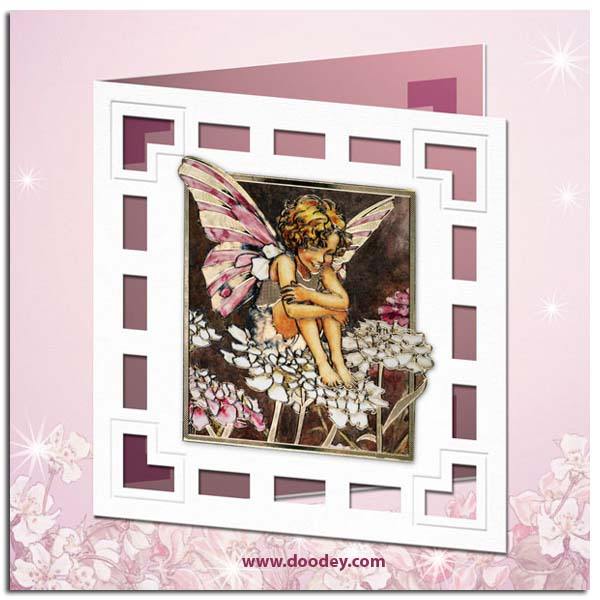 Candytuft Flower Fairy Flower Fairy Card Candytuft